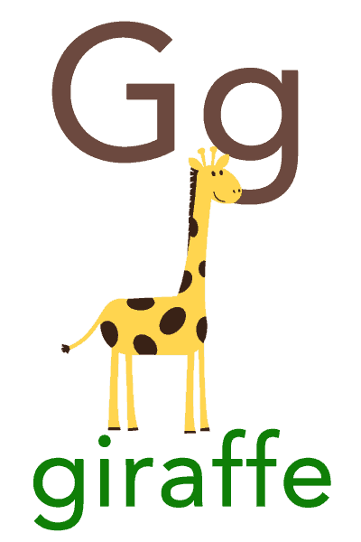 Baby ABC Flashcard - G for giraffe