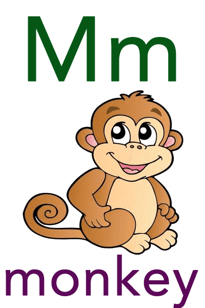 Baby ABC Flashcard - M for monkey