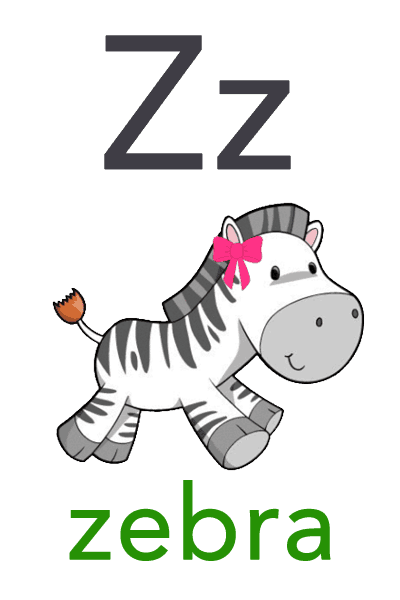 Baby Abc Flashcard Z For Zebra Baby Mozart