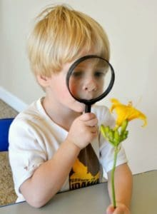 sensory activities for toddlers - sight